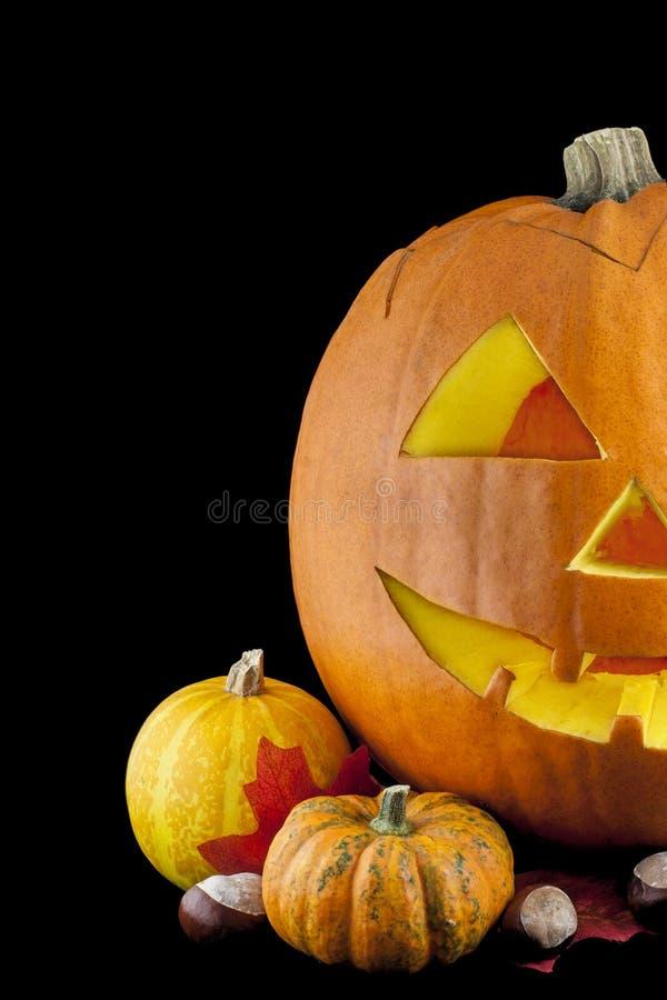 Halloween 03 pączuszku zdjęcie royalty free