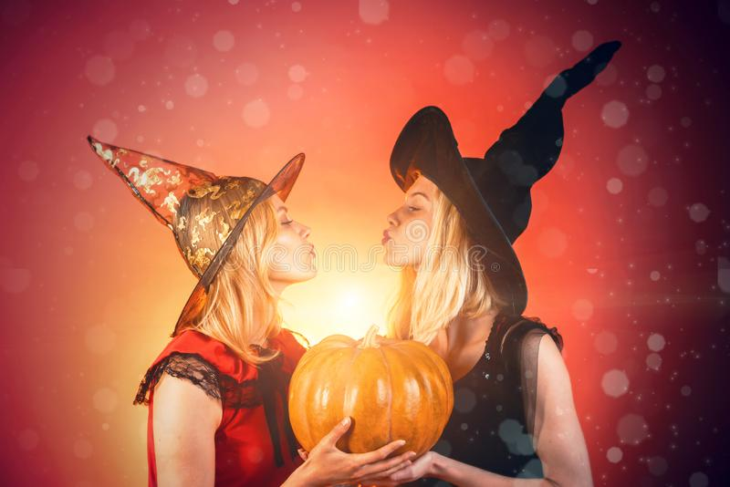 Halloween party. Two beautiful women in carnival sexy costumes of witches. Isolated image. Halloween copy space. royalty free stock photo