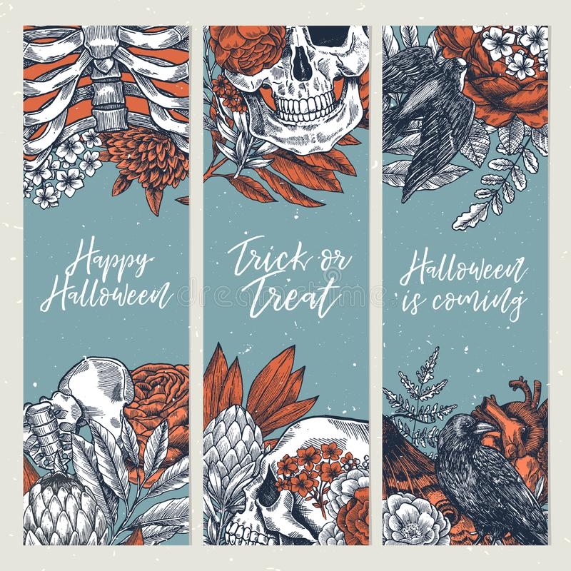 Halloween party vertical design templates. Vintage floral anatomy backgrounds. Vector illustration. Vector illustration. Halloween party vertical design vector illustration