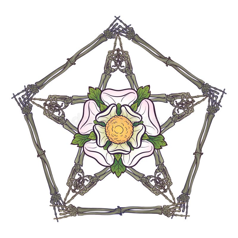 Halloween pentagrame. Human hand bones arranged in an intricate gothic occult ornament with a stylized rose flower in stock illustration