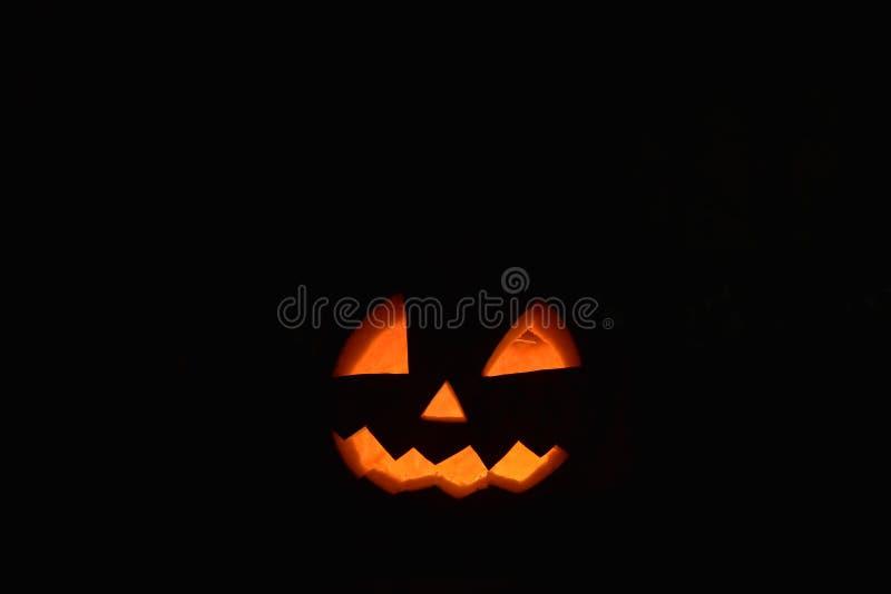 Halloween-pompoen hoofdhefboom in dark royalty-vrije stock foto's