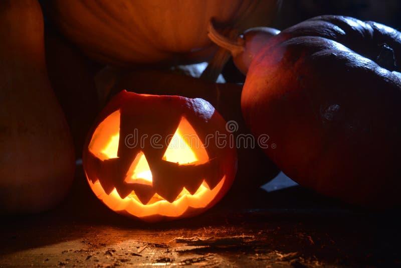 Halloween-pompoen onder maanlicht stock afbeeldingen