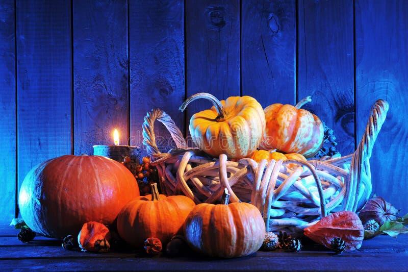 Halloween-pompoenen in blauw licht stock foto's
