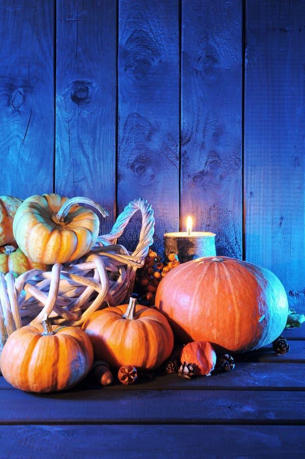 Halloween-pompoenen in blauw licht royalty-vrije stock fotografie