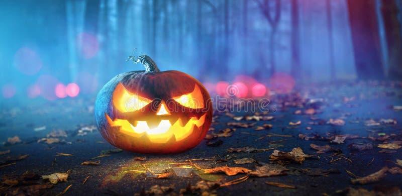 Halloween-Pompoenen die in het Bos van de Fantasienacht gloeien stock afbeeldingen