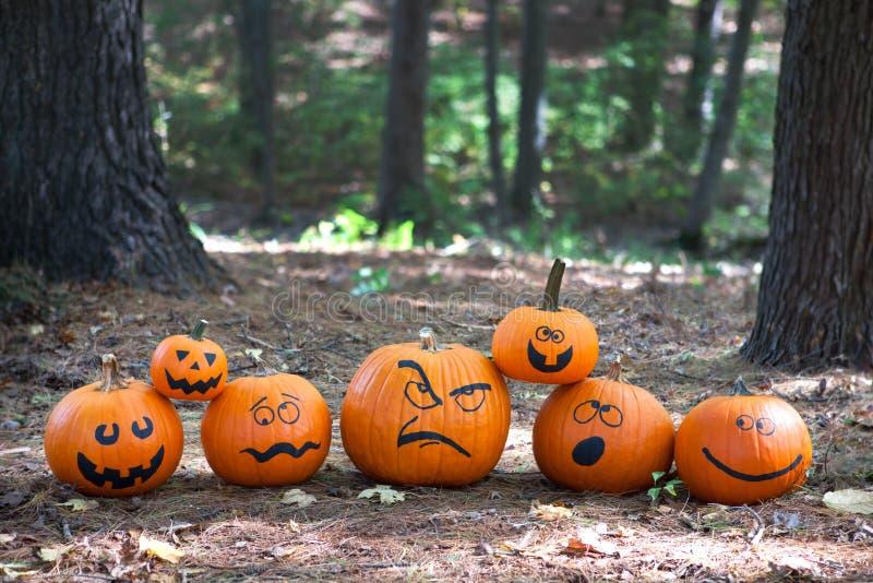 Halloween-pompoenen in het hout stock afbeeldingen