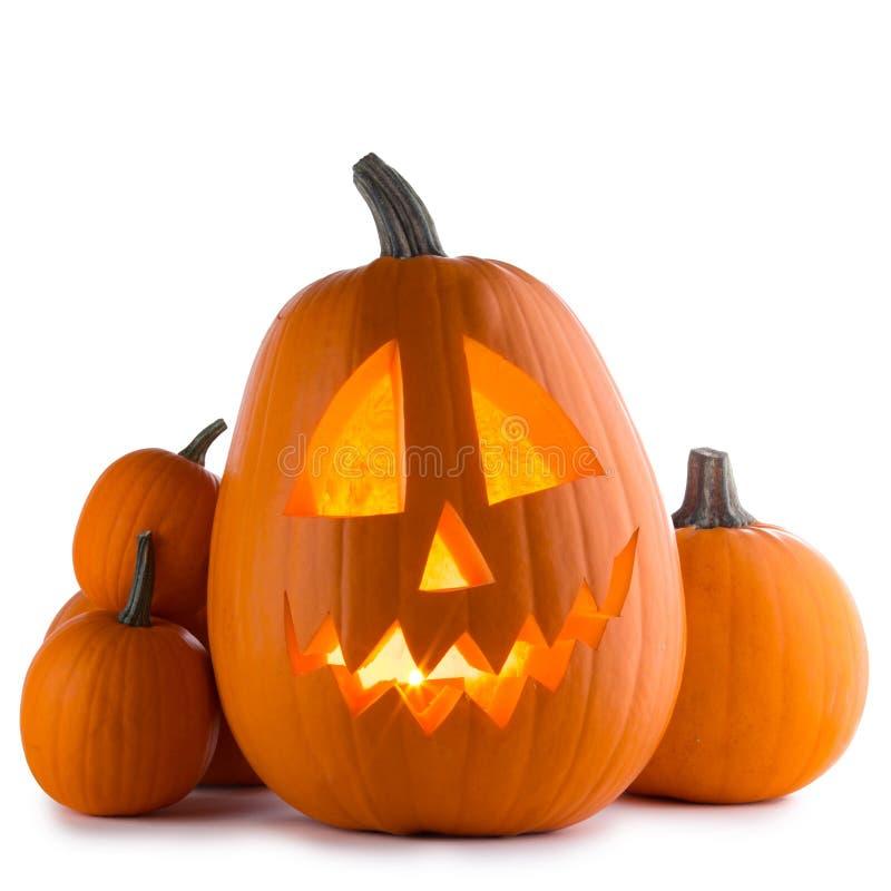 Halloween-pompoenen op wit stock afbeeldingen