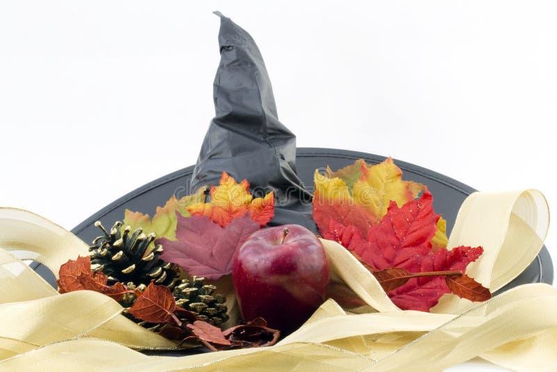 Halloween-Pracht lizenzfreies stockfoto
