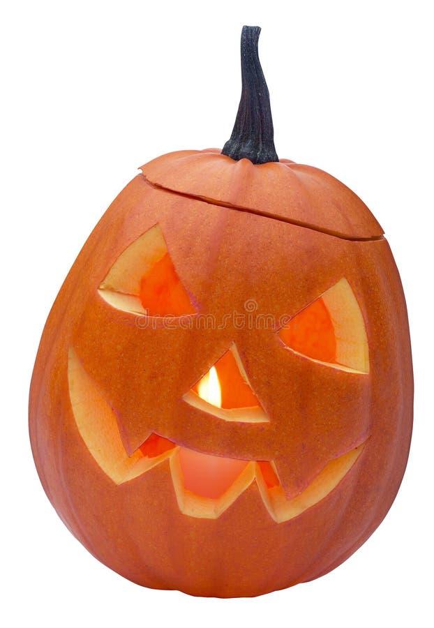 Free Halloween Pumkin Royalty Free Stock Photo - 3782985