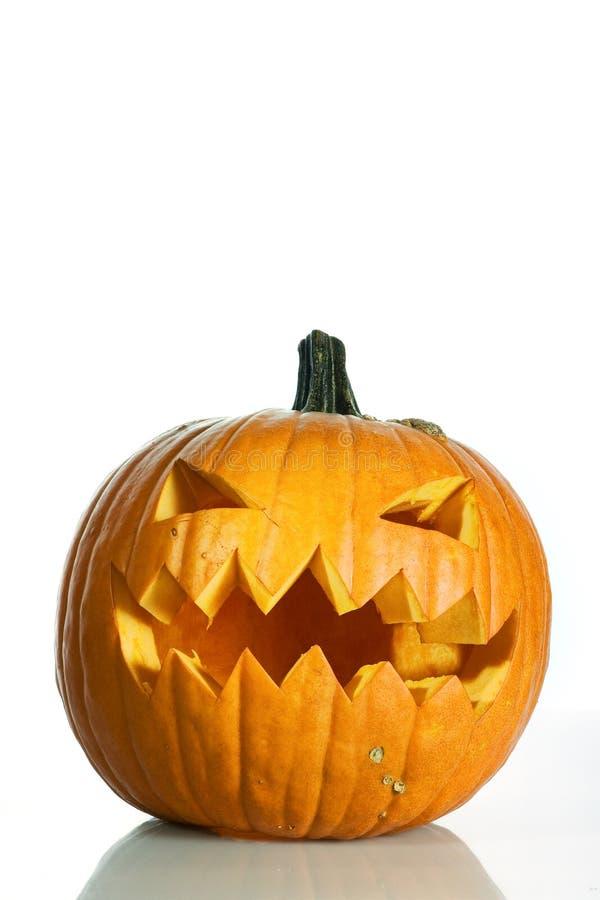 Download Halloween pumkin stock image. Image of holiday, garden - 6828331