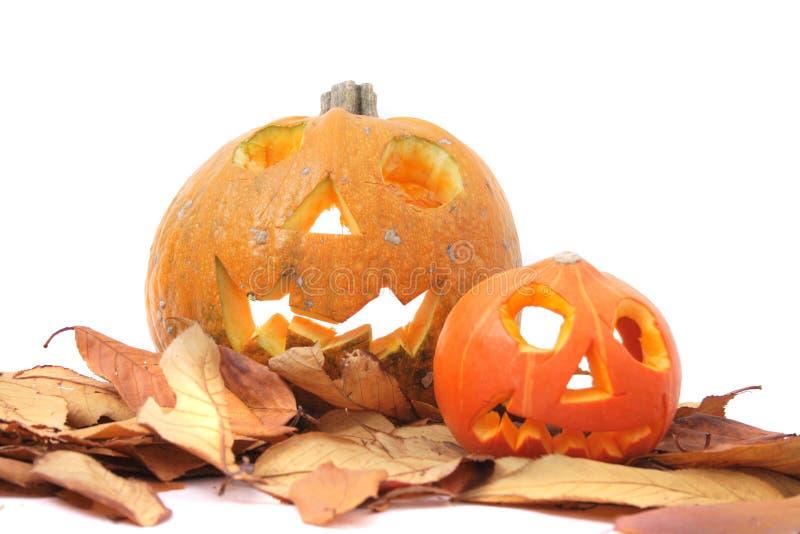 Halloween pumkins lizenzfreie stockfotografie