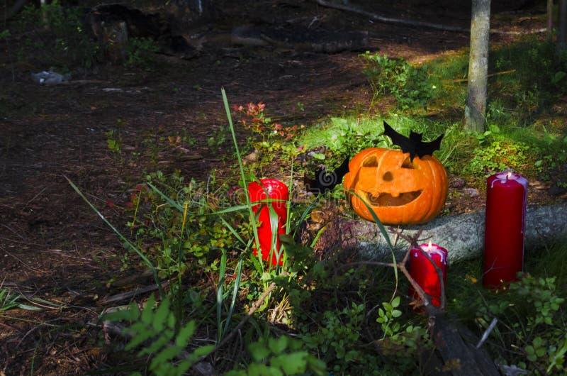 halloween pumpa med stearinljus, slagträn i skogen på en träbakgrund witchcraft V?stra kultur royaltyfri bild