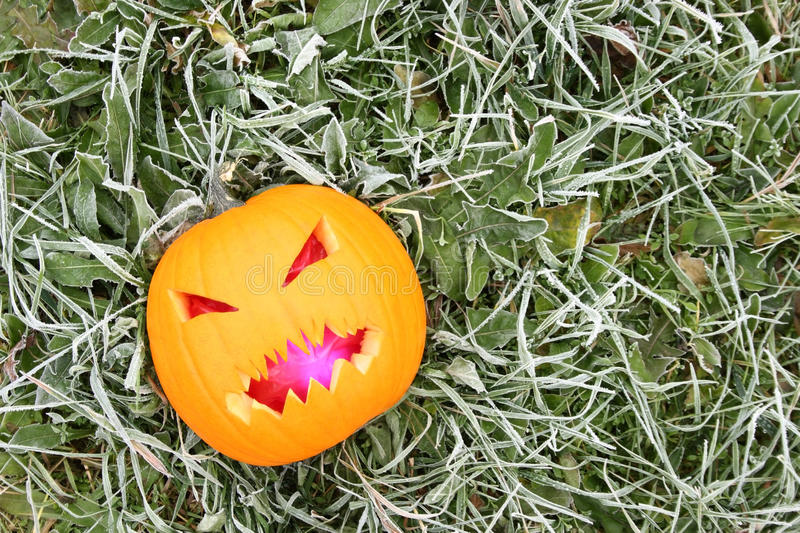Download Halloween Pumpkin Stock Photography - Image: 11611522