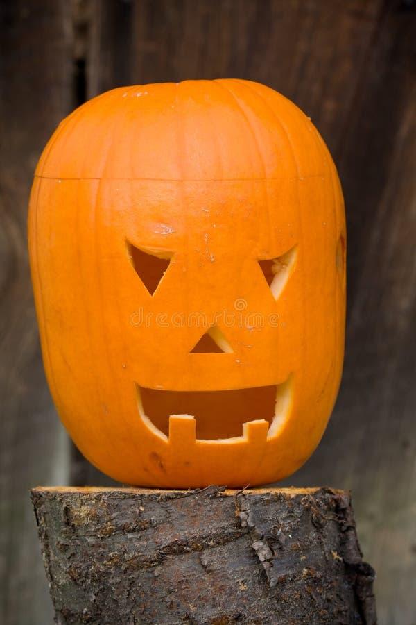 Download Halloween Pumpkin Royalty Free Stock Photos - Image: 21563628