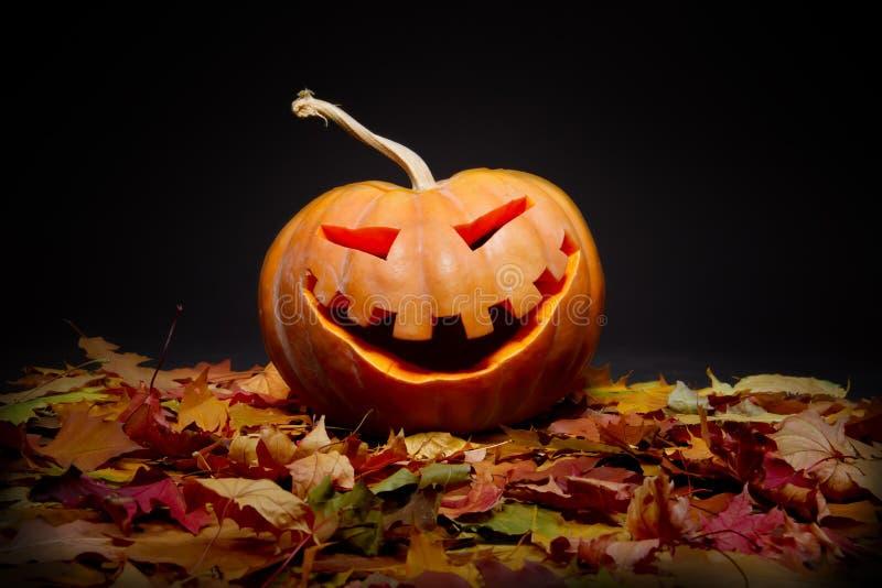 Download Halloween pumpkin stock photo. Image of head, frighten - 21587498