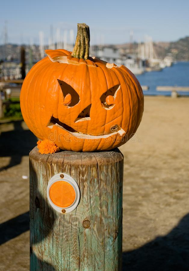 The Halloween pumpkin royalty free stock images