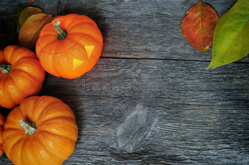 Halloween Pumpkin Carving Jackolantern. A group of pumpkins and one jackolantern on barn board texture perfect for your text invitations royalty free stock photography
