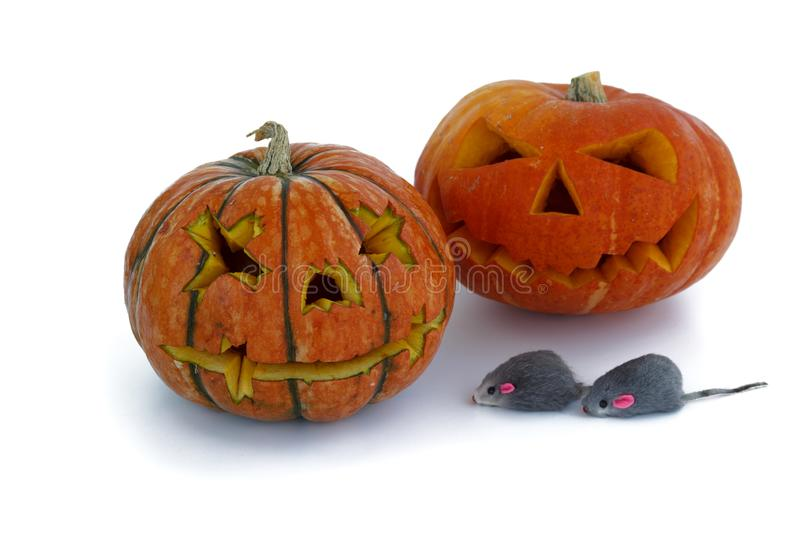 Halloween pumpkin with funny rat isolated on white background. Jack lantern from juicy pumpkin. rat symbol of new year.  stock photo