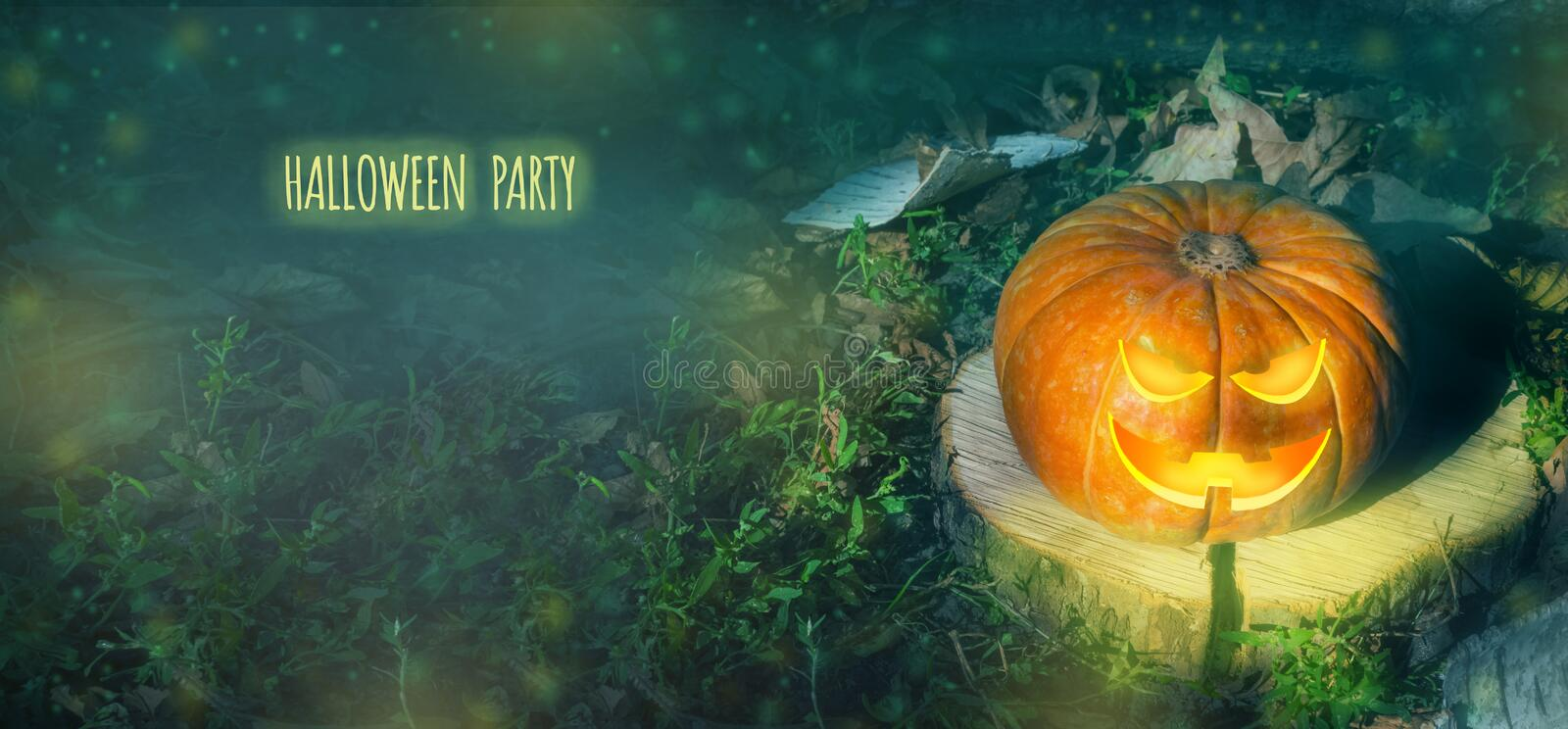 Halloween pumpkin on the ground at night in a mystical forest. Halloween background. Sinister eyes of pumpkins. Halloween party. Autumn festival. Magic.place royalty free stock photos