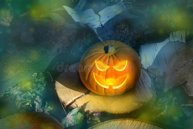 Halloween pumpkin on the ground at night in a mystical forest. Halloween background. Sinister eyes of pumpkins. Halloween party. Halloween pumpkin on the ground stock photo