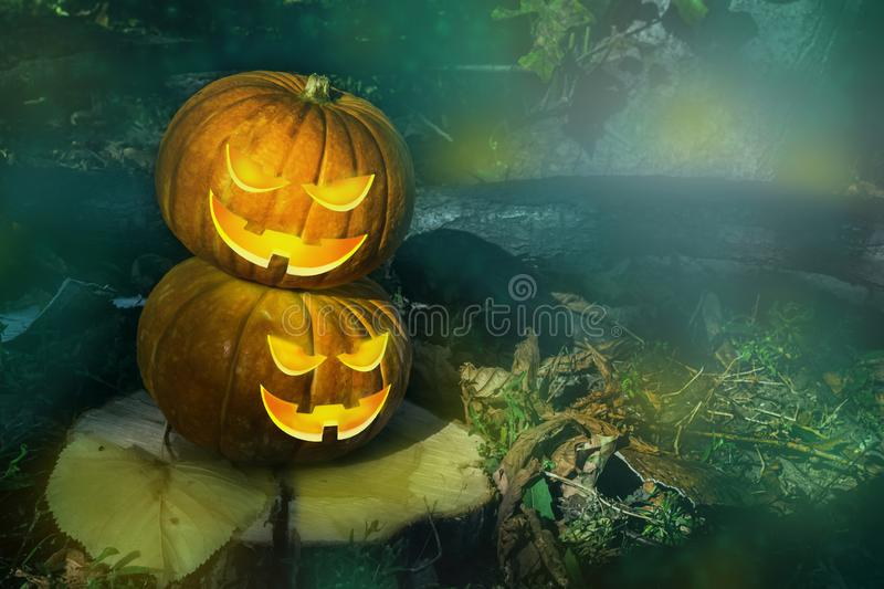 Halloween pumpkin on the ground at night in a mystical forest. Halloween background. Sinister eyes of pumpkins. Halloween party. Autumn festival. Magic royalty free stock photography