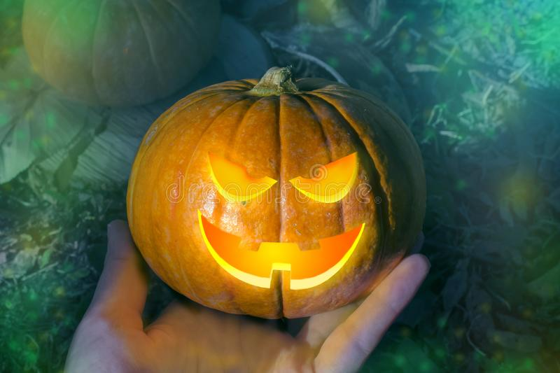 Halloween pumpkin in hand at night in mystical forest. Halloween background. Holiday. Sinister eyes of the pumpkin. Halloween. Party. Autumn holiday.Do a stock photo