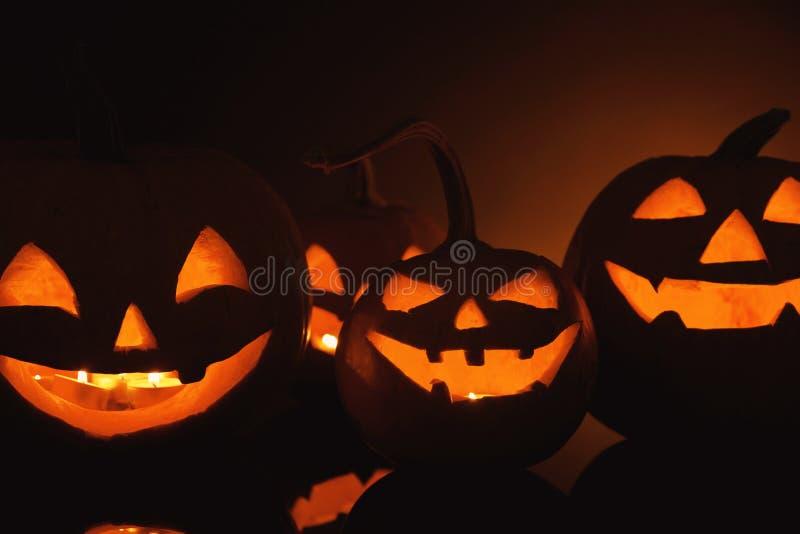 Halloween pumpkin heads stock image