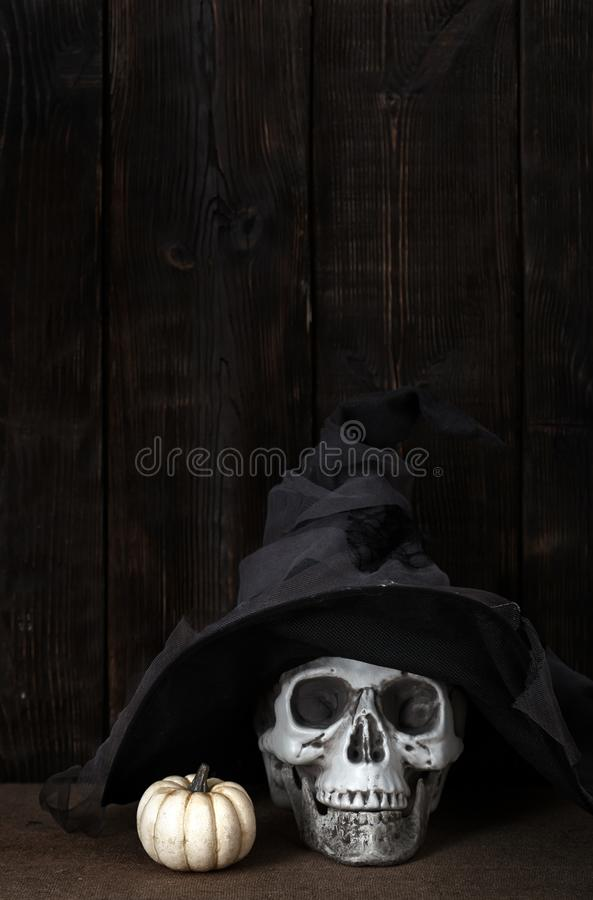 Halloween pumpkin and human skull in witch hat royalty free stock photography