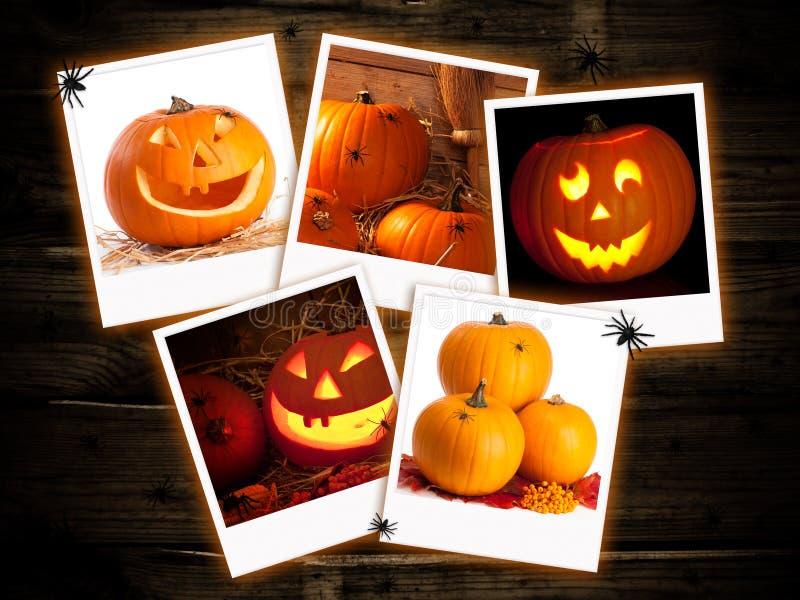 Halloween Pumpkin Images. Halloween jack o lantern pumpkin images on a dark wood background stock images