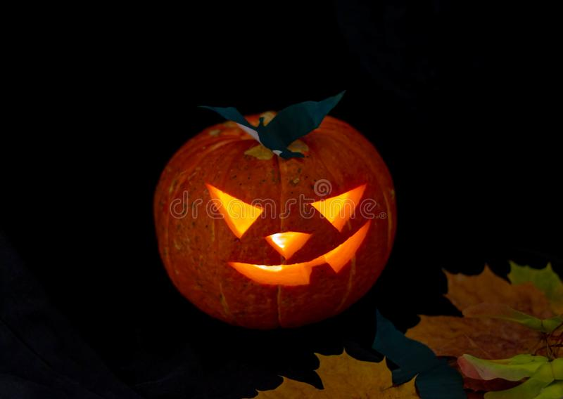 Halloween pumpkin lantern with dry leaves with black background. Mystery royalty free stock images