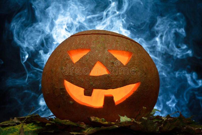 Download Halloween pumpkin on leafs stock photo. Image of backgrounds - 21239872