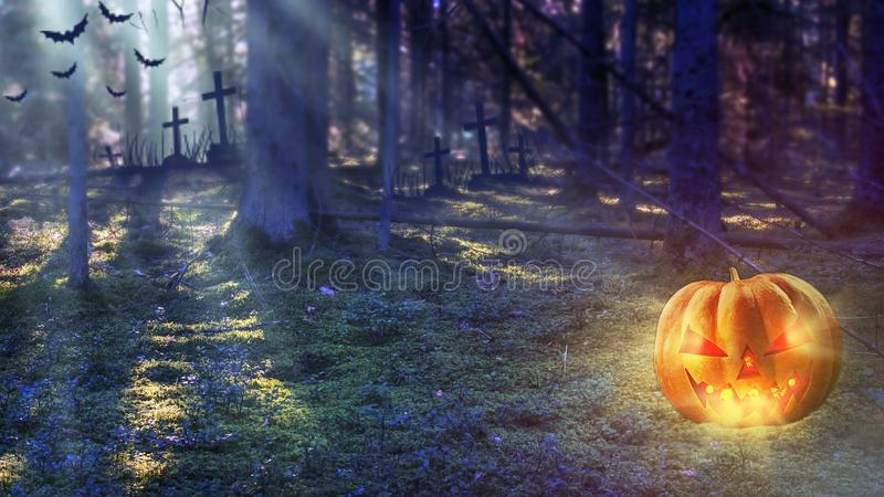 Halloween Pumpkin In Mystic Forest At Night. Halloween background royalty free stock photo