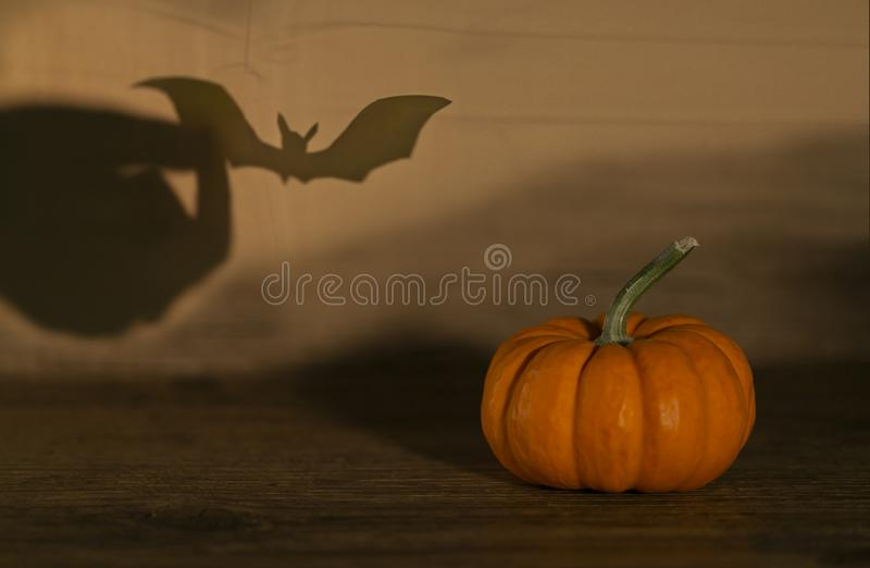 Halloween pumpkin on old wooden background. Bat behind. Shadow theatre concept royalty free stock images