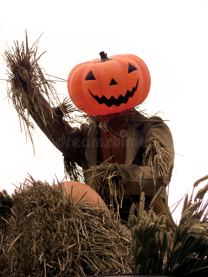 Halloween - Pumpkin Scarecrow Stock Photo