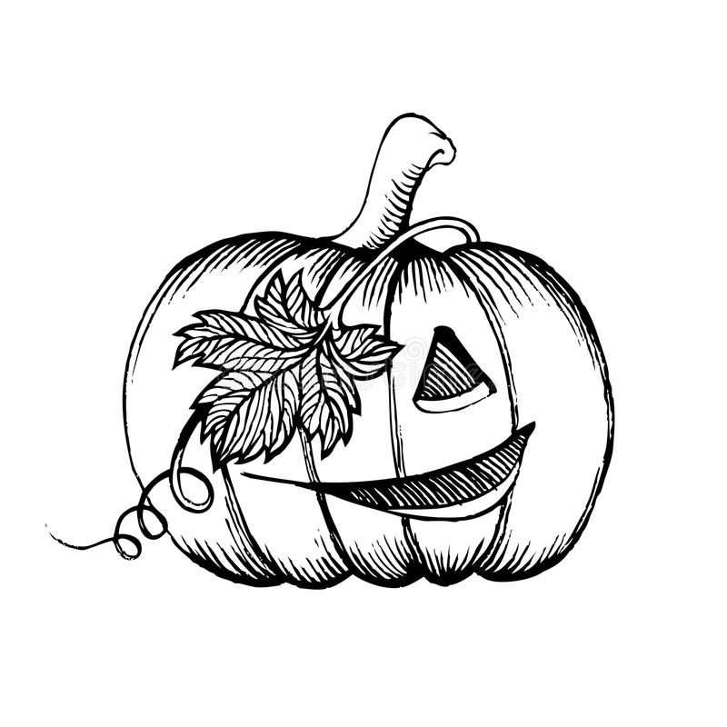 halloween pumpkin sketch drawing with leaves pirate character