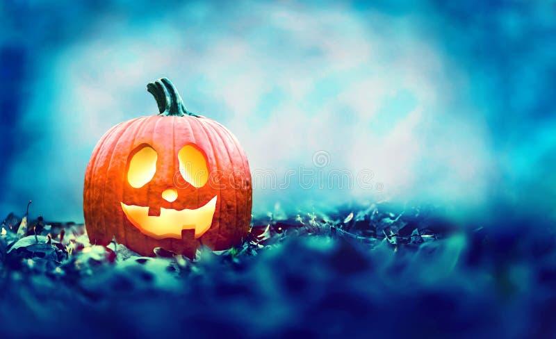Halloween pumpkin at night royalty free stock photography
