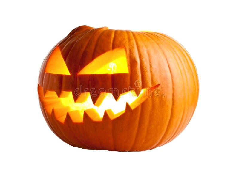 Halloween pumpkin on white. Halloween pumpkin isolated on white stock image