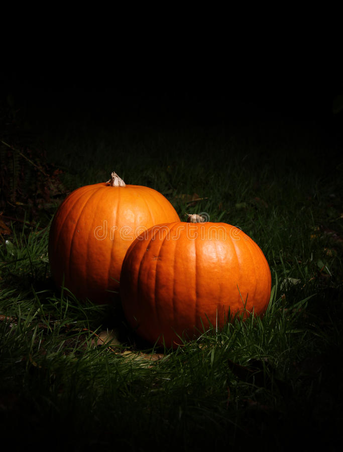 Free Halloween Pumpkins Royalty Free Stock Image - 21665886