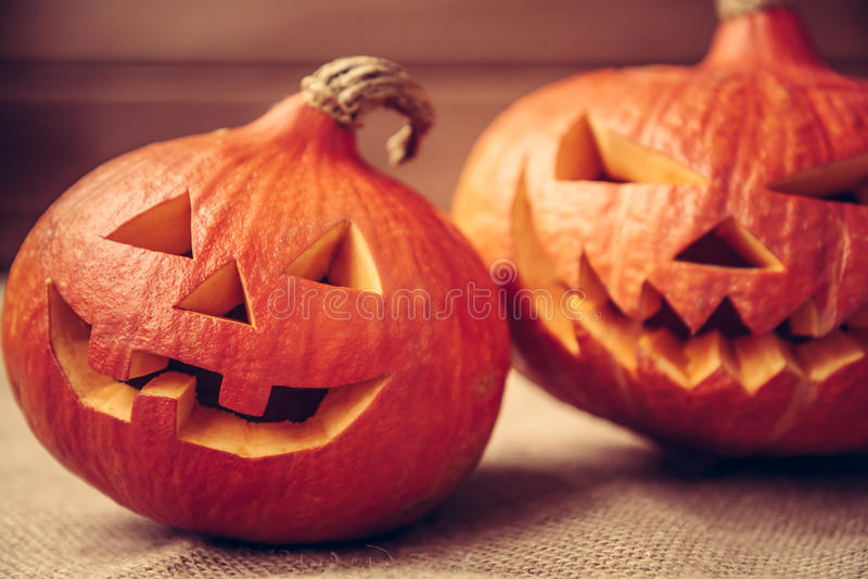 Halloween pumpkins for autumn holidays royalty free stock photo