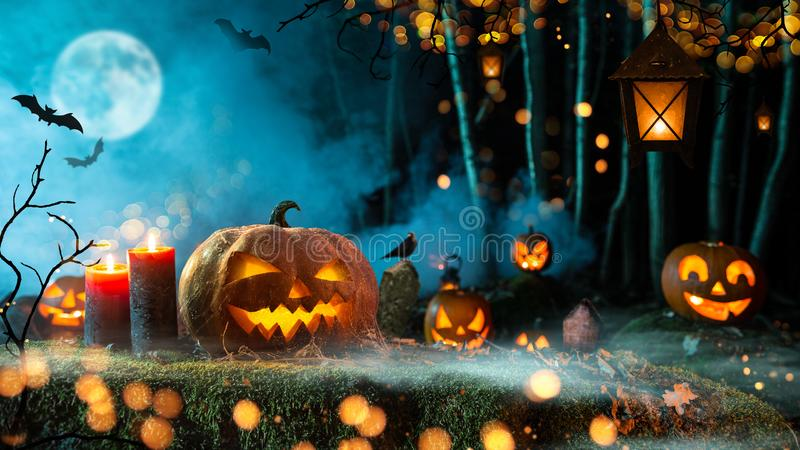 Halloween pumpkins on dark spooky forest. Halloween pumpkins on dark spooky forest with blue fog in background royalty free stock photos