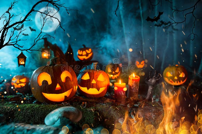 Halloween pumpkins on dark spooky forest. Halloween pumpkins on dark spooky forest with blue fog in background royalty free stock photography