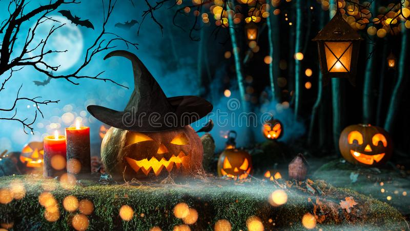 Halloween pumpkins on dark spooky forest. Halloween pumpkins on dark spooky forest with blue fog in background royalty free stock images