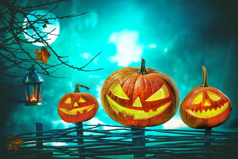 Halloween pumpkins in front of nightly spooky forest. Background royalty free stock photos