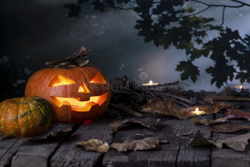 Halloween pumpkins head jack o lantern and candles on wooden table background in a mystic  forest at night. stock photography