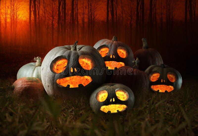Halloween pumpkins at night royalty free stock image