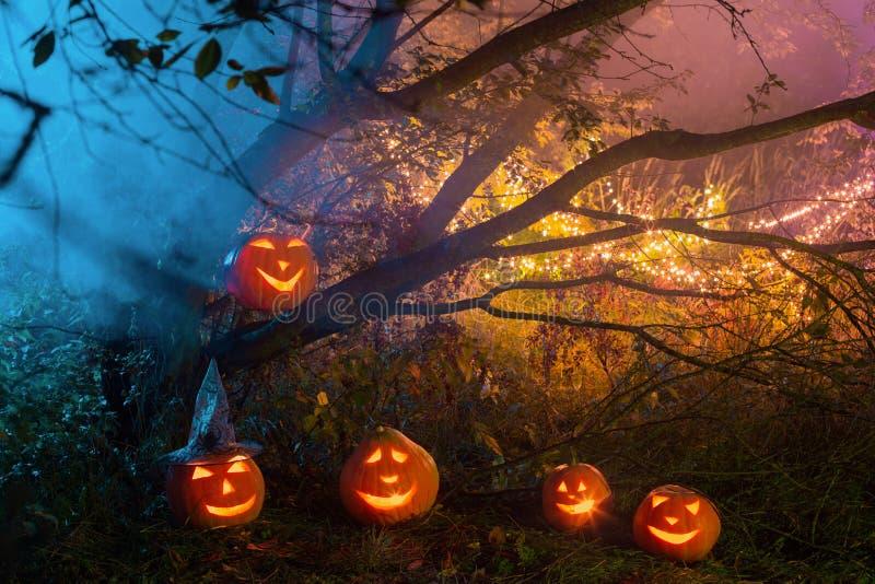Halloween pumpkins in night forest. Halloween pumpkins in night mystery forest royalty free stock photography
