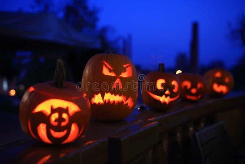 Halloween pumpkins at night. Funny halloween pumpkins at night stock photos