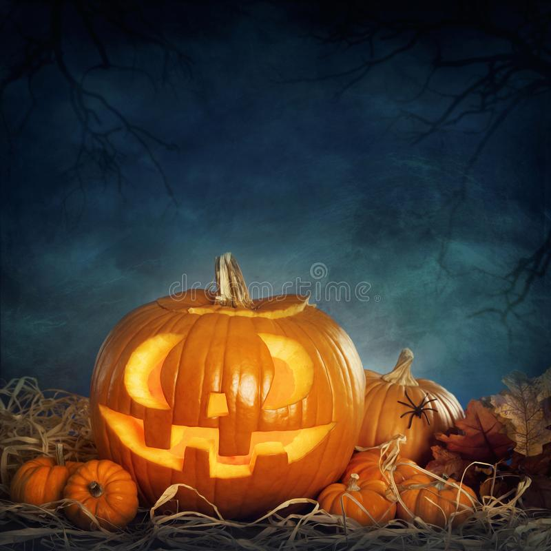 Halloween pumpkins. In the night royalty free stock photos