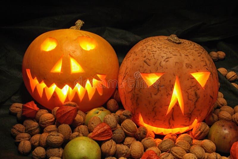 Halloween pumpkins in the night. Nice halloween pumpkins on the black background stock image