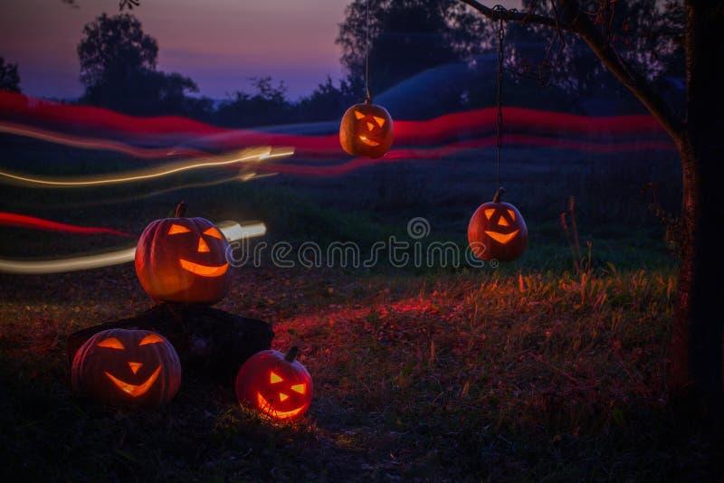 Halloween pumpkins in night outdoor. The Halloween pumpkins in night outdoor royalty free stock image